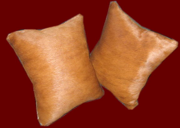 Set of 2 Light Leather Throw Pillows